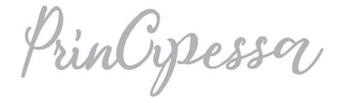 principessa logo